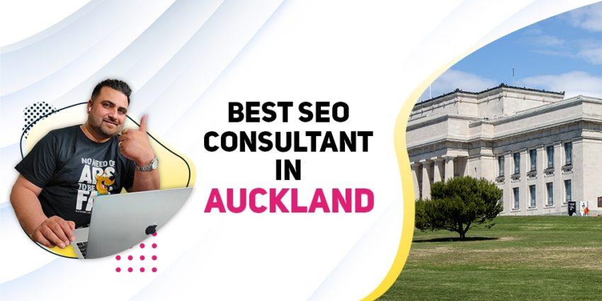 best-seo-consultant-auckland